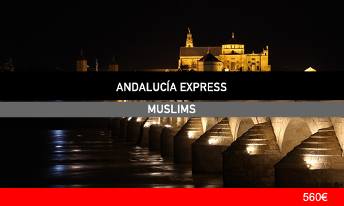 andExpress_M